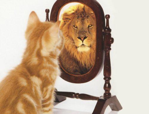 Come riconoscere un narcisista patologico